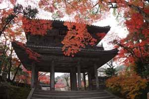 功山寺4ブログ