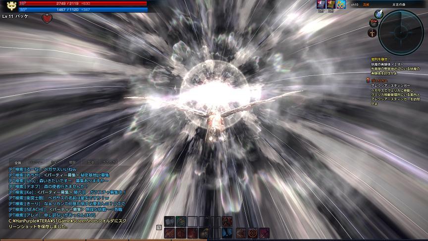 TERA_ScreenShot_20110702_230817.jpg