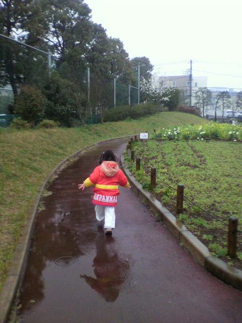 2010-04-05 13_41_00№(005)
