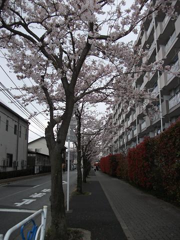2010-04-07 12_35_44潤・019-2)