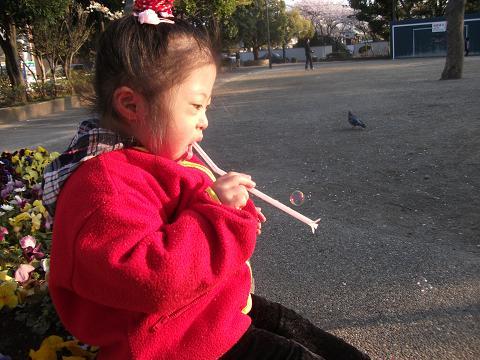 2010-04-08 17_02_11潤・077-2)
