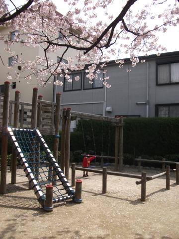 2010-04-09 10_35_16№(006-2)