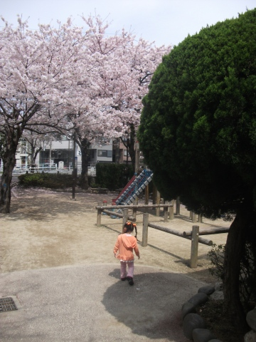 2010-04-11 10_52_52№(046-2)
