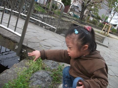 2010-04-13 16_50_29№(013-2)