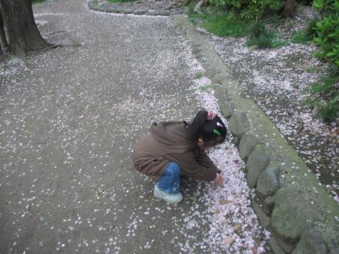 2010-04-13 16_48_21№(006-2)