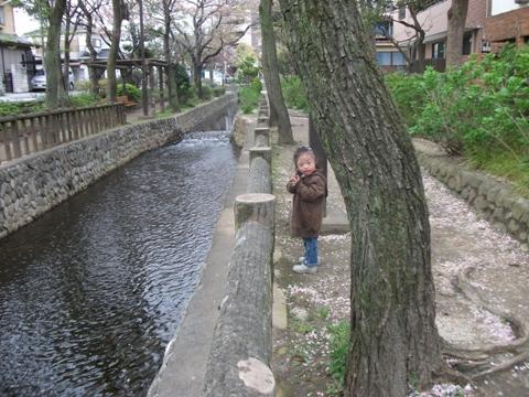 2010-04-13 16_47_58№(004-2)