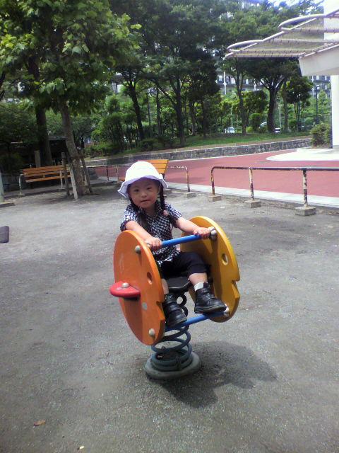 2010-06-15 12_32_00№(011)