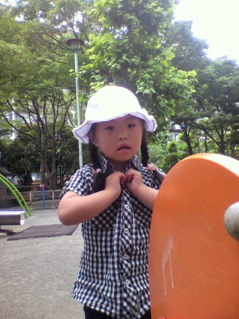 2010-06-15 12_41_00№(023)