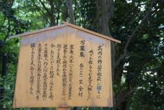 byakugoji4.jpg