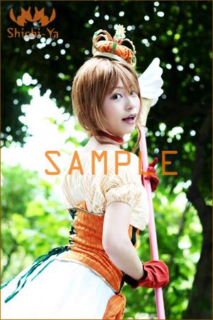 sample016.jpg