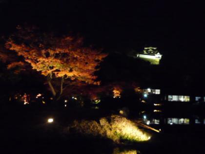 玄宮園ライトアップ1