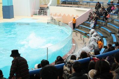 2010.01.31 神戸旅行 031
