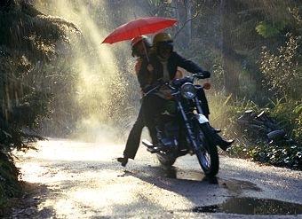 2-8  rain