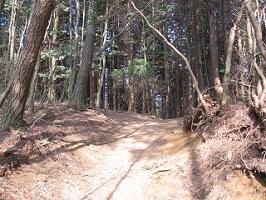 20100322六甲山系トレイル (28)