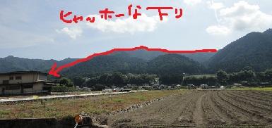 京都1周 (151)