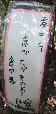 京都1周 (188)
