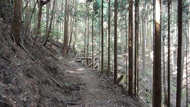 京都1周 (231)
