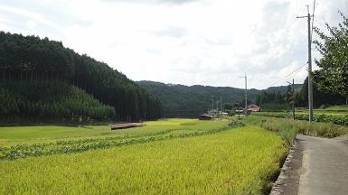 京都1周 (242)