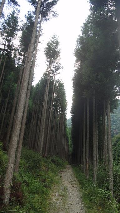 京都1周 (308)