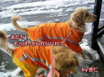 SANY0004_20100104085716.jpg