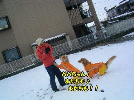 SANY0009_20100104085917.jpg