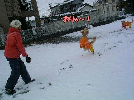 SANY0011_20100104085816.jpg