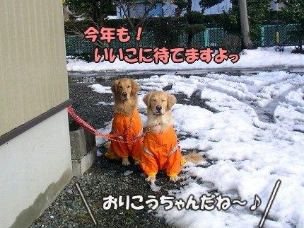 SANY0029_20100104090301.jpg