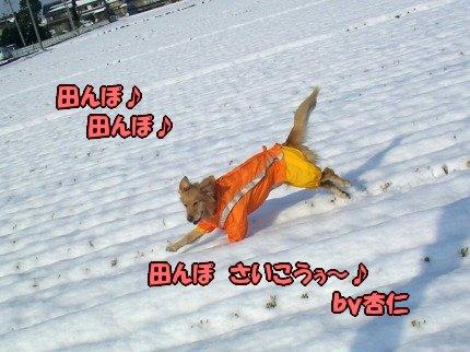 SANY0033_20100104090301.jpg