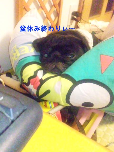 moblog_8aad7887.jpg