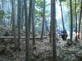 山の神行事写真