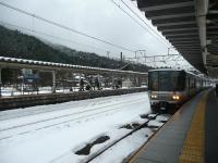 P1130408.jpg