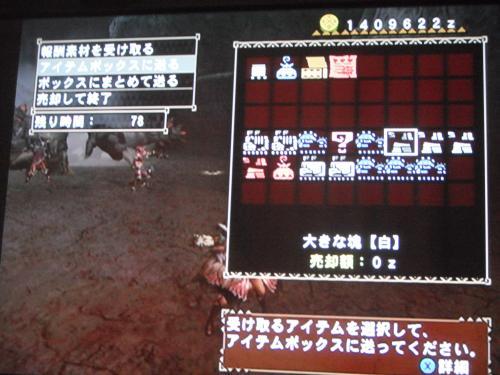 DSCF3776_convert_20110310125714.jpg