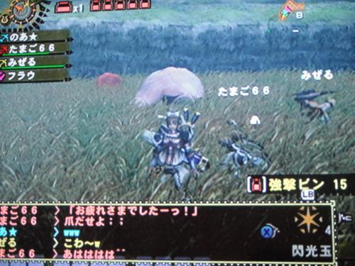 DSCF3893_convert_20110328133347.jpg