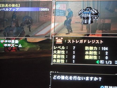 DSCF3897_convert_20110329121734.jpg