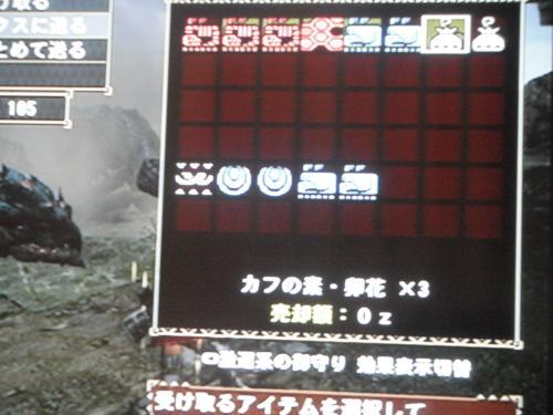 DSCF3968_convert_20110404121440.jpg