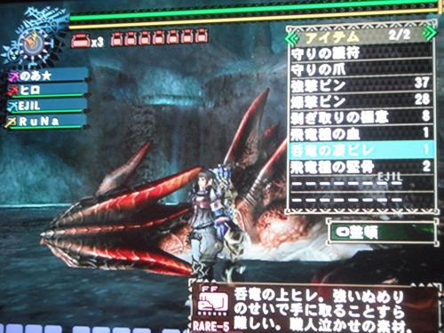 DSCF3980_convert_20110404100200.jpg