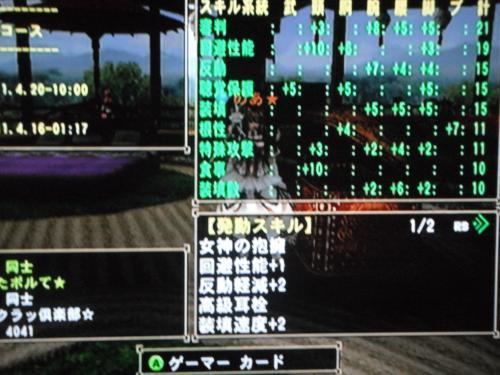 DSCF4135_convert_20110414013612.jpg