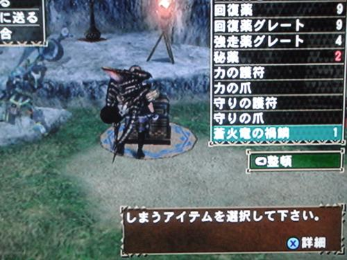 DSCF4245_convert_20110425012008.jpg