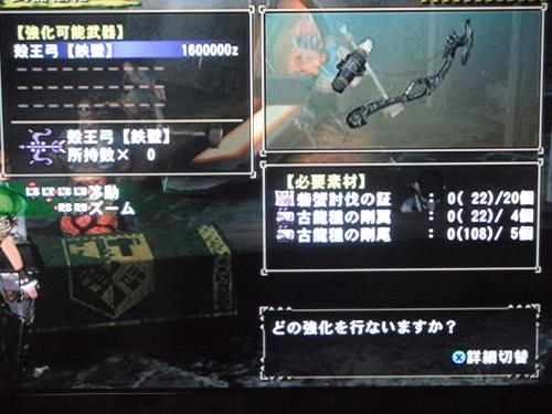 DSCF4247_convert_20110425011855.jpg