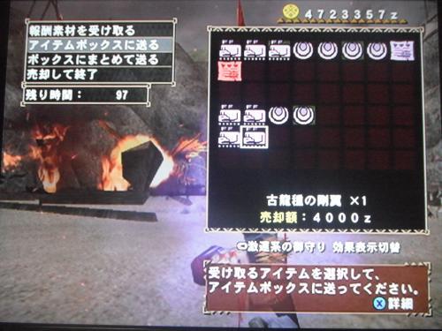 DSCF4278_convert_20110428013446.jpg