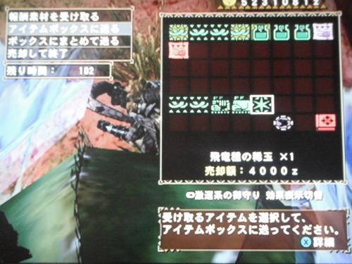 DSCF4308_convert_20110429020855.jpg