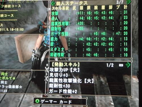 DSCF4496_convert_20110515111817.jpg