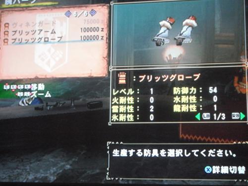 DSCF4546_convert_20110519131647.jpg