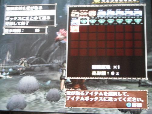 DSCF4689_convert_20110531121420.jpg