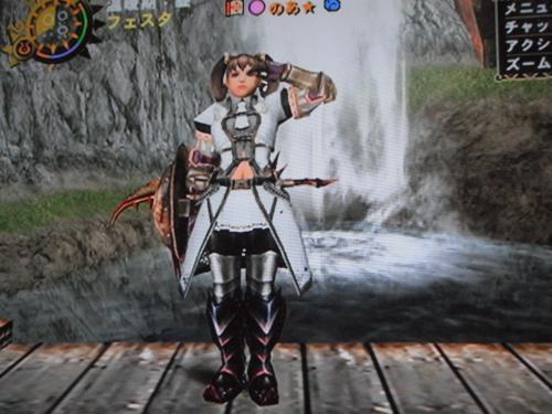 DSCF4825_convert_20110613130407.jpg