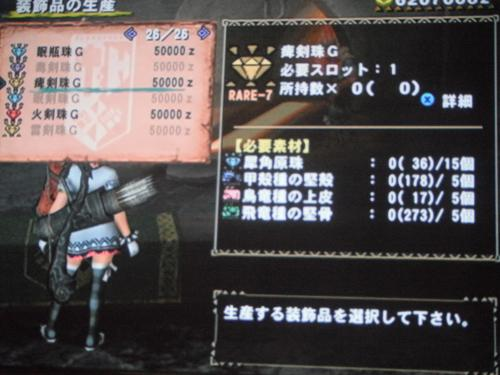 DSCF4840_convert_20110616192650.jpg