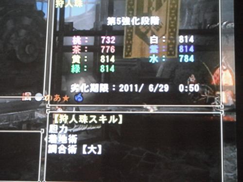DSCF4878_convert_20110620010106.jpg