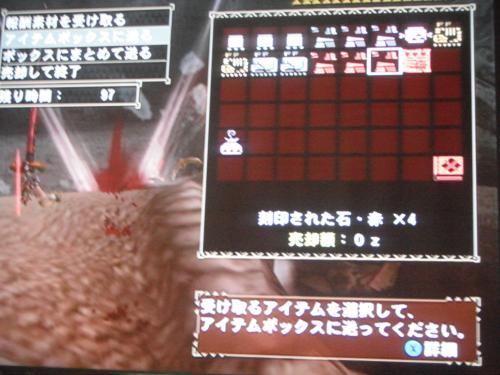 DSCF4885_convert_20110621121441.jpg