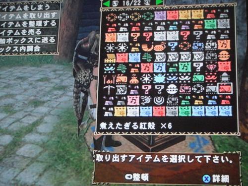 DSCF4926_convert_20110625130957.jpg