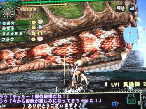 DSCF4975_convert_20110701100759.jpg